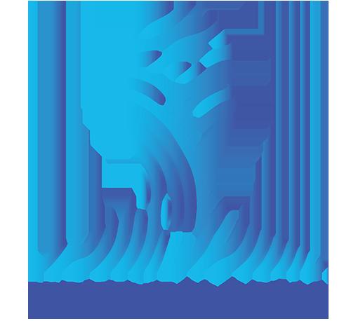 User Bilişim